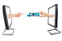 transfer domain from wanwang to  namesilo