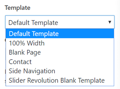 Avada5版本的模板没有portfolio可选