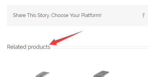 修改AVADA产品页面的related projects 3