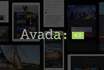AVADA4.0、5.0 强大搜索功能介绍