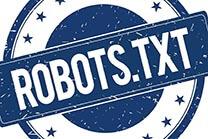 外贸网站的robots怎么写