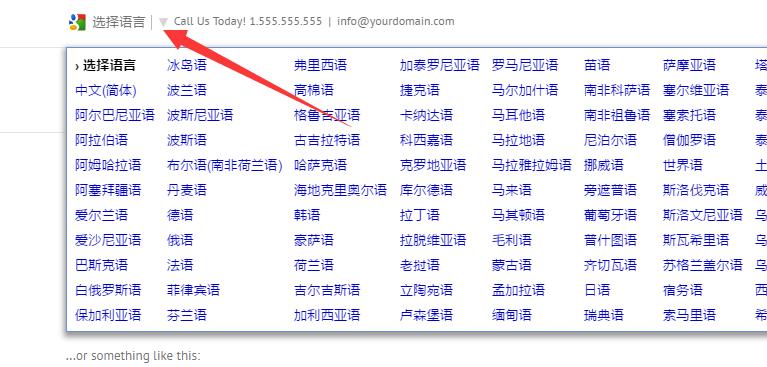 如何在Avada网站添加Google翻译 9