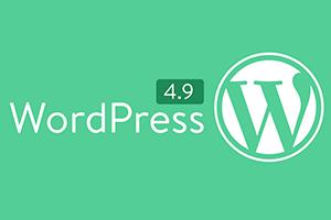 WordPress4.9版本上线,AVADA出现新BUG之解决方法