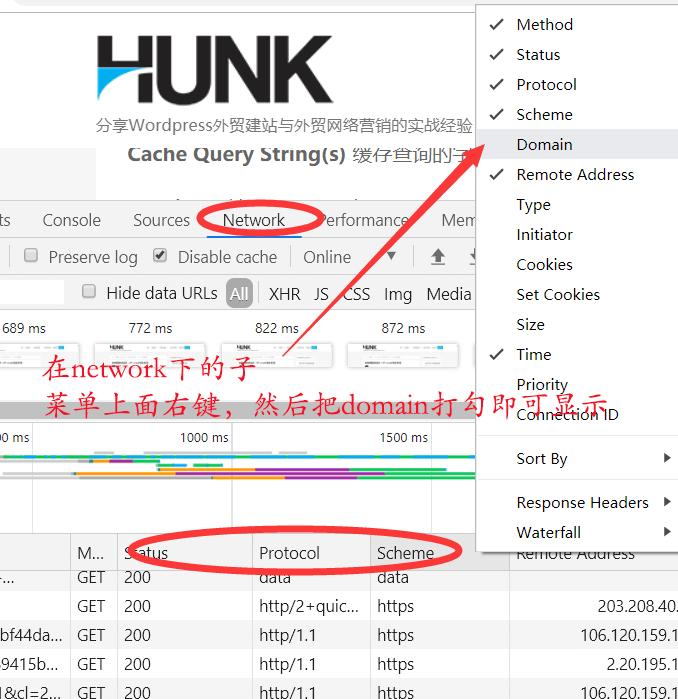 wp rocket使用教程之显示浏览器network下的domain菜单