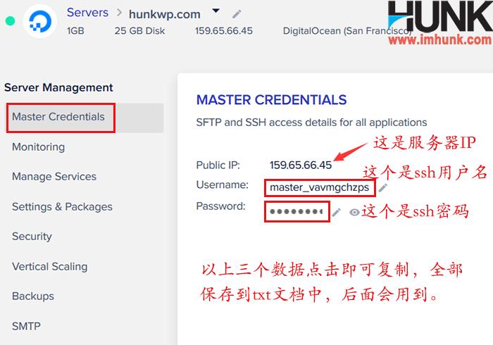 cloudways查看服务器ip 2